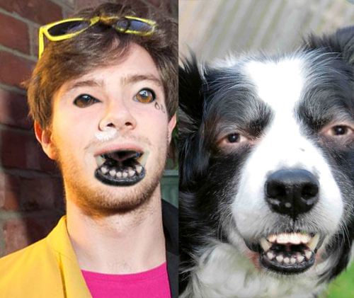 Images of Human Face Dog - #rock-cafe