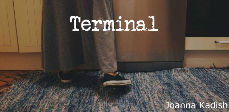 Terminal Joanna Kadish