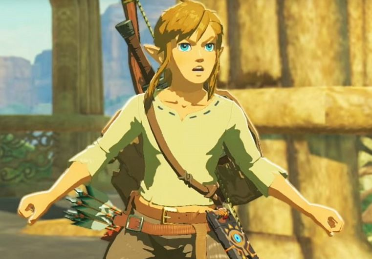 Breath of the Wild game