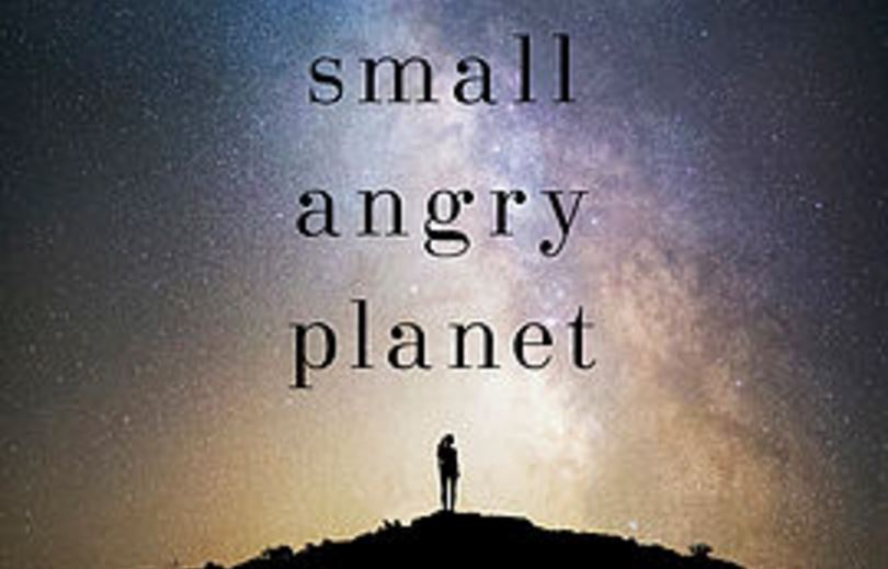 small-angry-planet-book