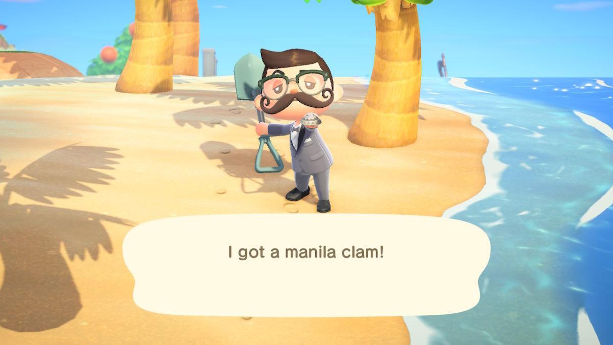 Manila Clam New Horizons