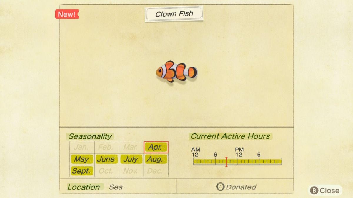 New Horizons Clown Fish 2