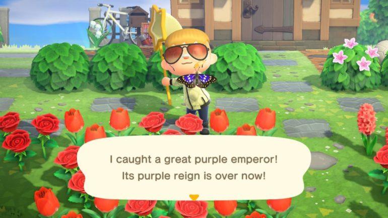 Great purple emperor