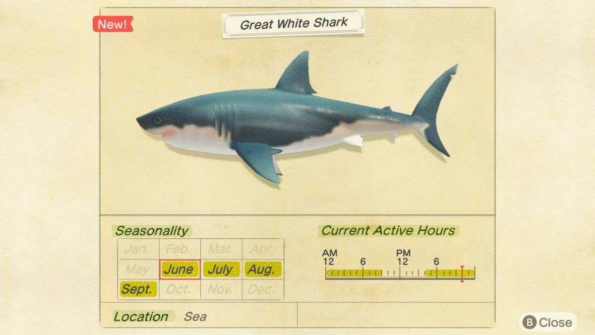 Great White Shark Critterpedia