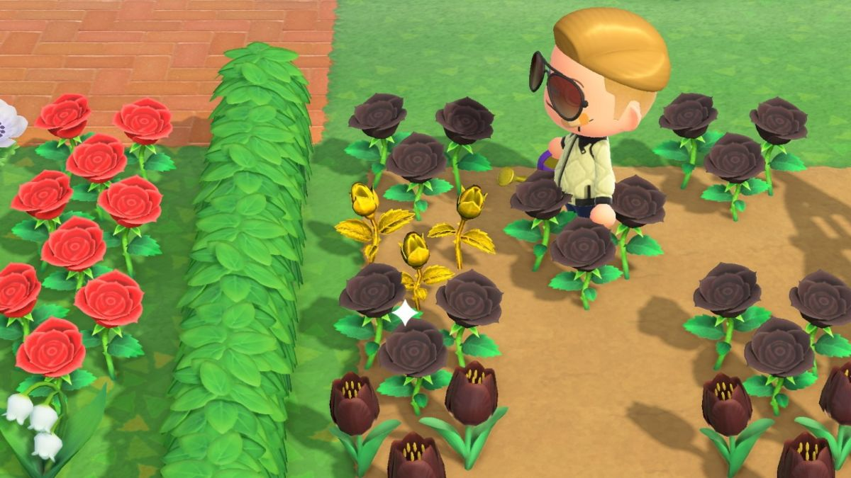 New Horizons Golden Flowers