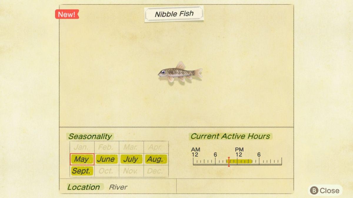 New Horizons Nibble Fish