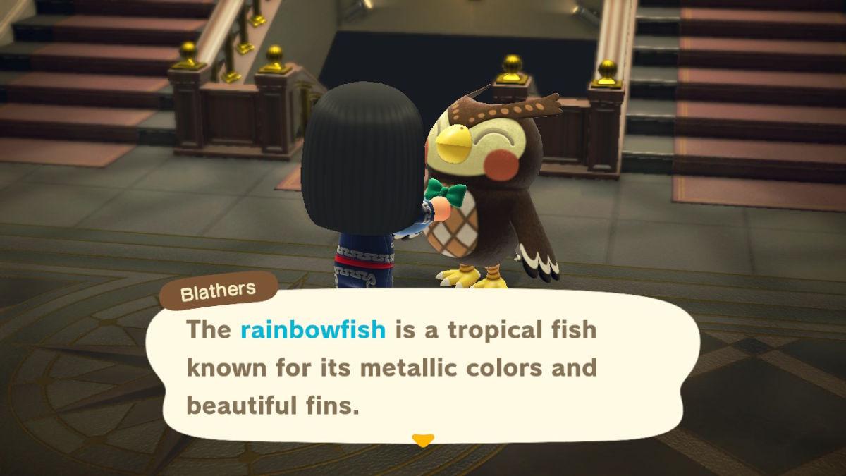 Rainbowfish New Horizons 2