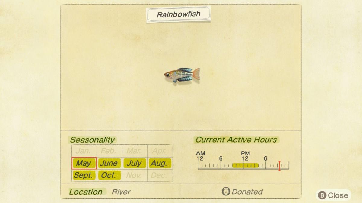Rainbowfish New Horizons 3