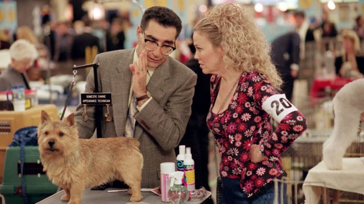 Best In Show Movie