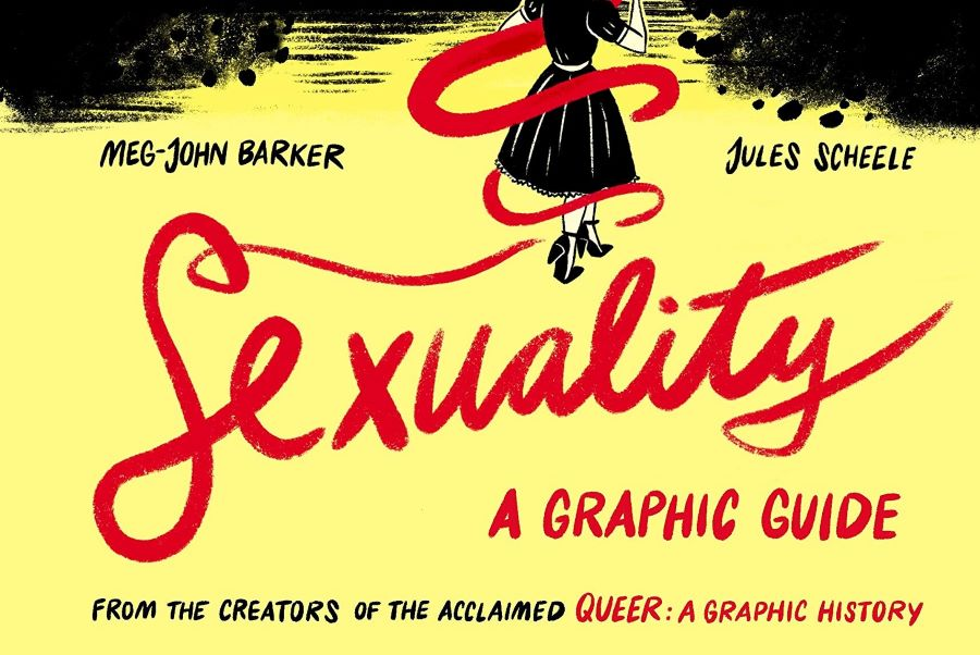 Sexuality: A Graphic Guide